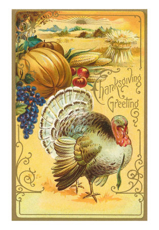 We will be closed for Thanksgiving - Have a Safe and Happy Holiday